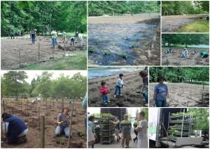 2014 Community Garden Planting Day